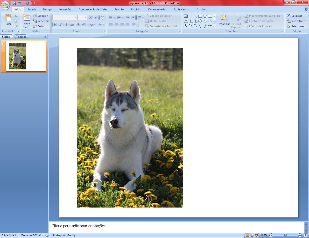 Salvando imagens pelo PowerPoint